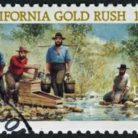 California Gold & Black Gold Rush