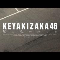 Sakamichi Review : Kaze ni Fukaretemo MV